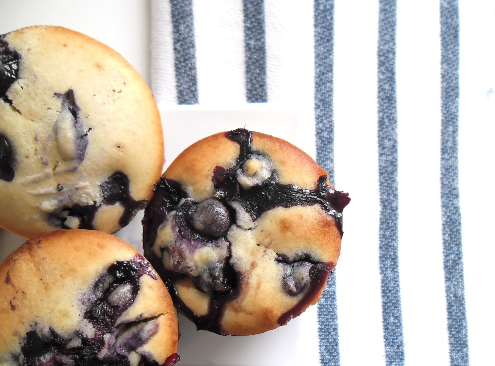 blueberry 028