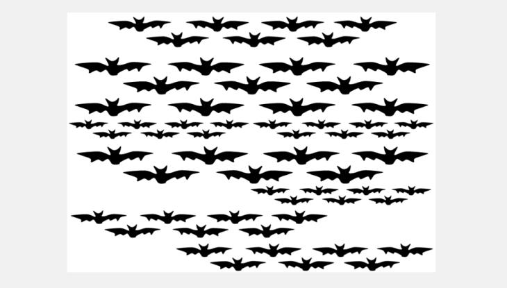 halloween 2013 chauve souris