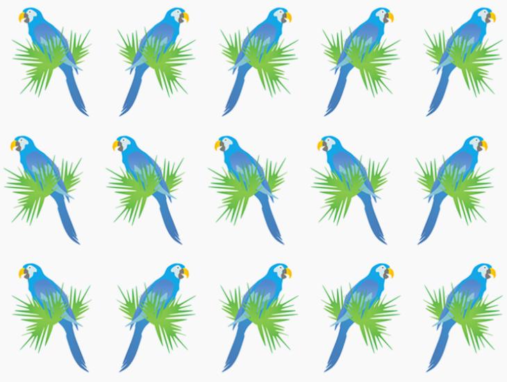 blue parrots