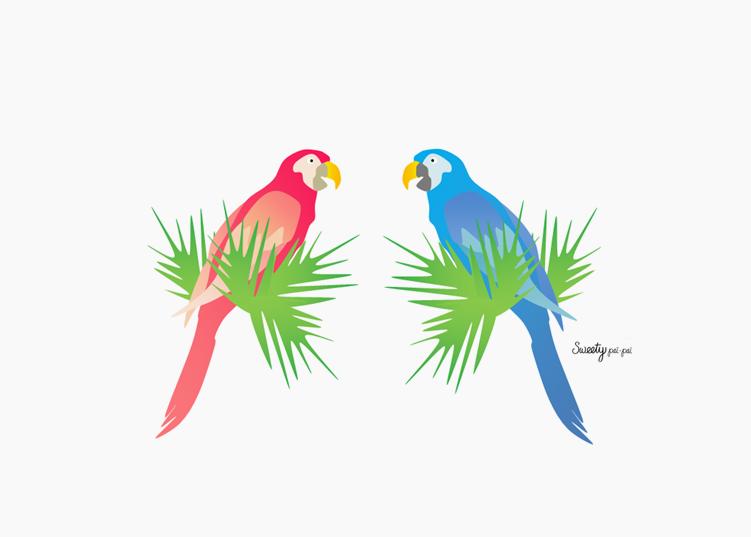 Papagaio Do Brasil