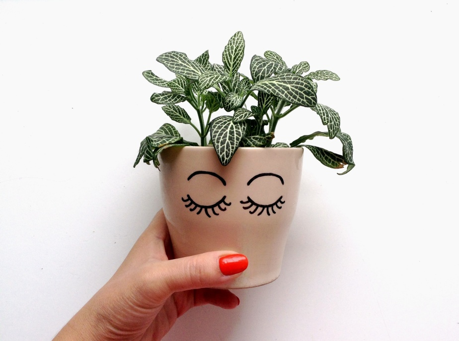 { Little DIY } Mademoiselle Plante