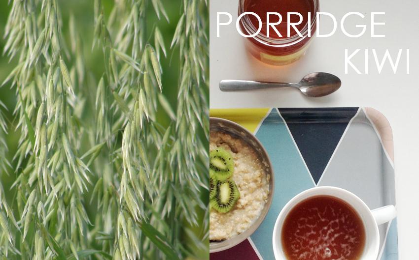 porridge kiwi