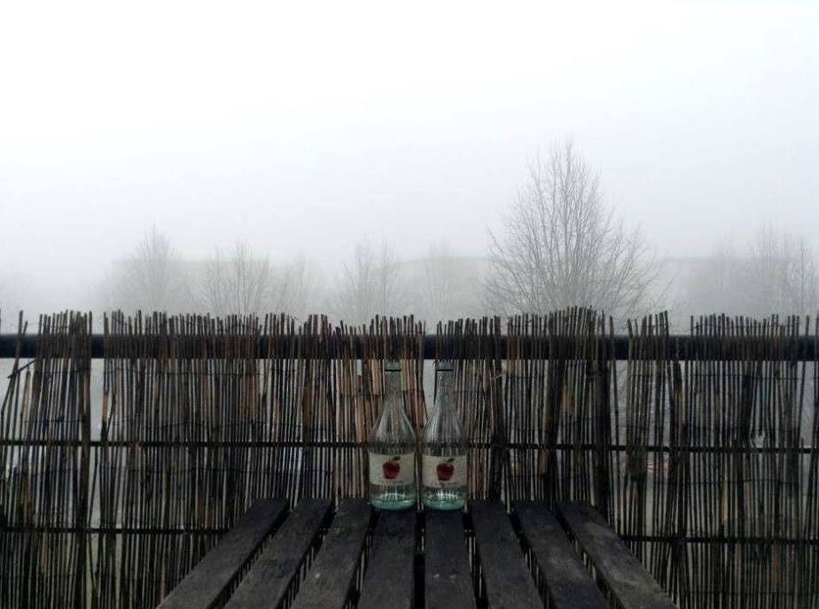 Sunday … Foggy Sunday…