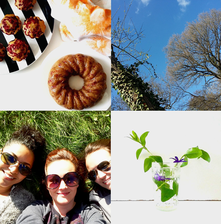 spring we