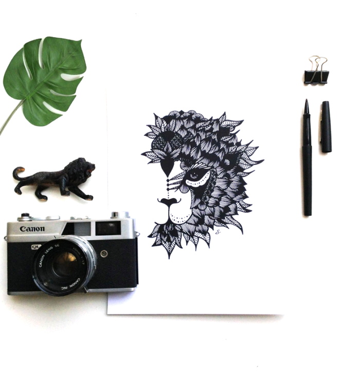 into-the-black-and-wild-lion