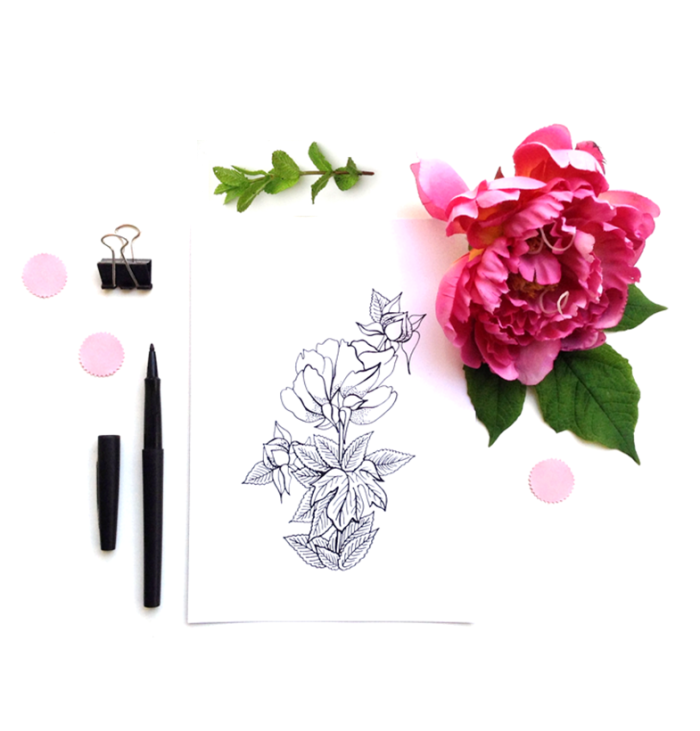 into-the-black-and-wild-peony-mint