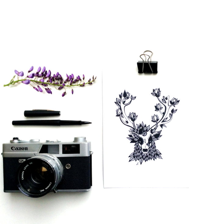 into-the-black-and-wild-stag-carte