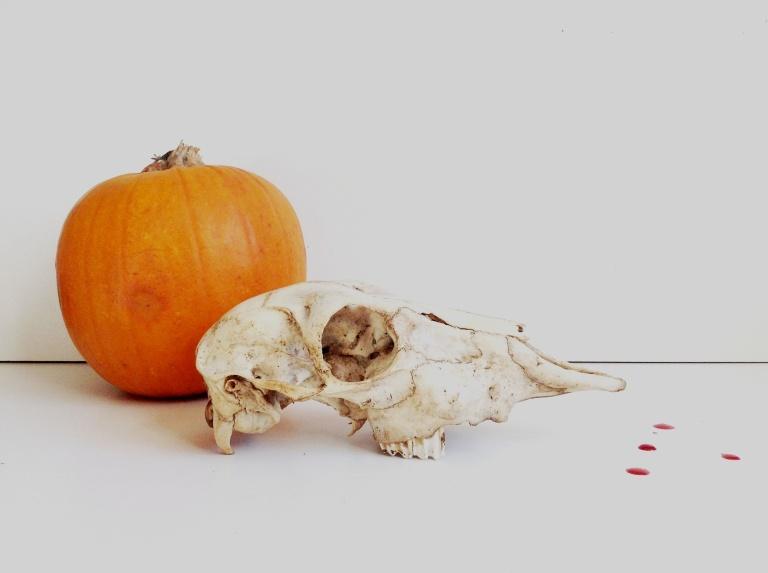 halloween 044