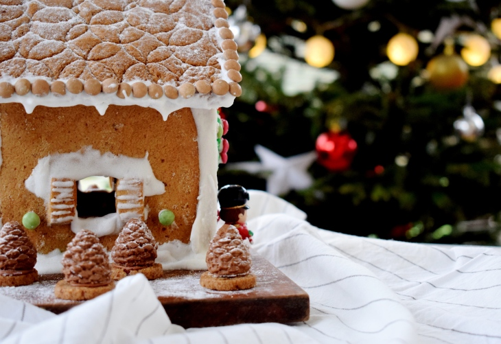 GINGERBREADHOUSE.jpg17