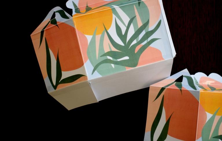 Mini BOX CARTE ENVELOPPE Tropicool4
