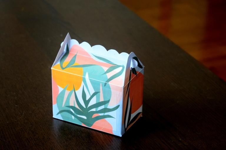 Mini BOX CARTE ENVELOPPE Tropicool5.JPG